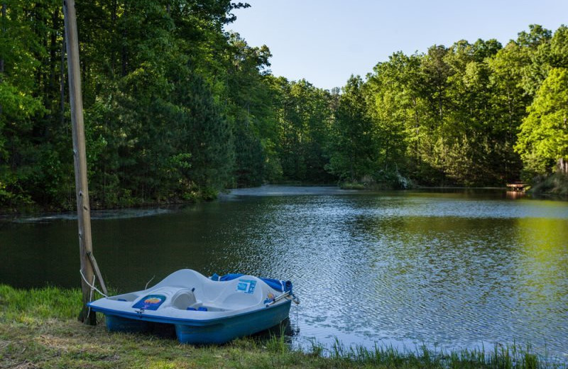 Lake with paddle boat at Mountain Oasis Cabin Rentals.
