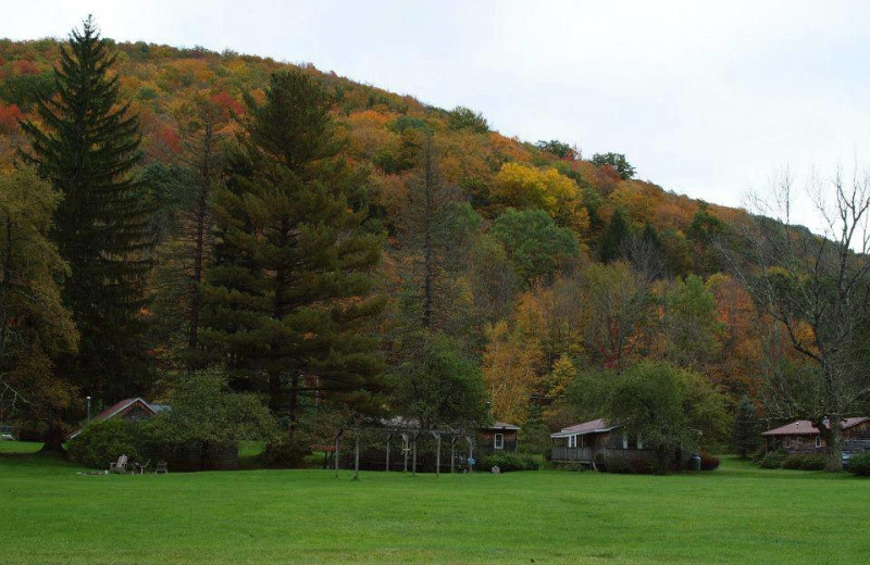 Mountain view at Cold Spring Lodge.