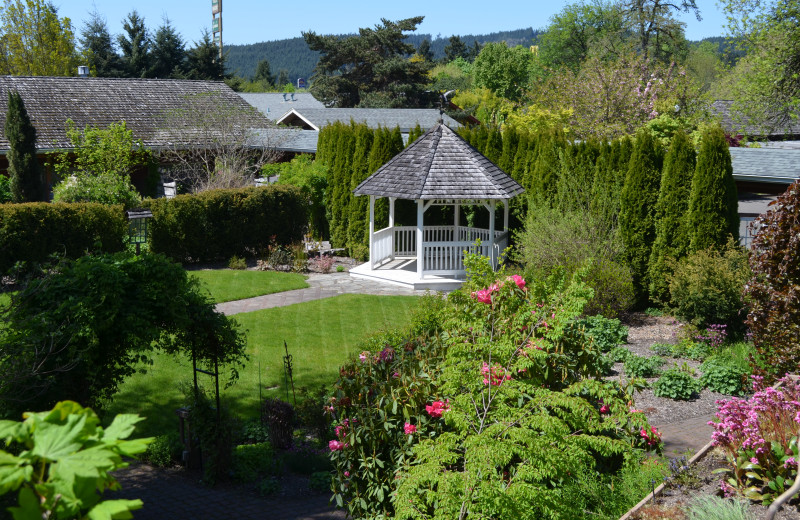gray front located breakfast cat motels view cottages in bed grove oregon scaled cottage inn