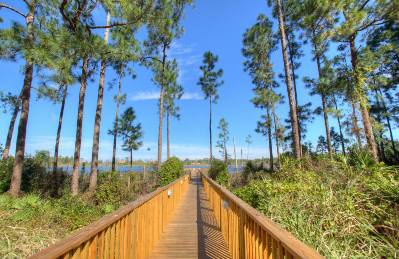 Walk way to sun deck at Lake Eve Resort.