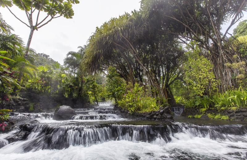 Springs at Tabacon Resort.