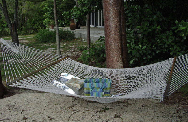 Hammock at Rock Reef Resort.