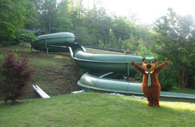 Yogi and the 300 ft slide at Yogi Bear's Jellystone Park Marion.