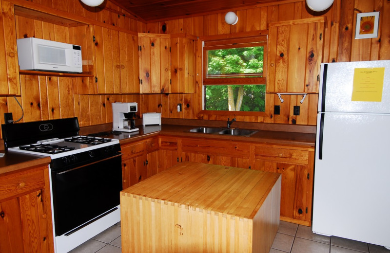 Cabin kitchen at Geiger's Trails End.