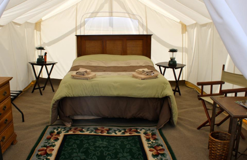 Tent Interior at Yellowstone Under Canvas