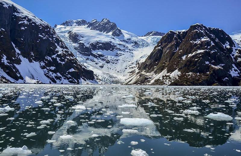 Glaciers at Big Sky Charter & Fishcamp.