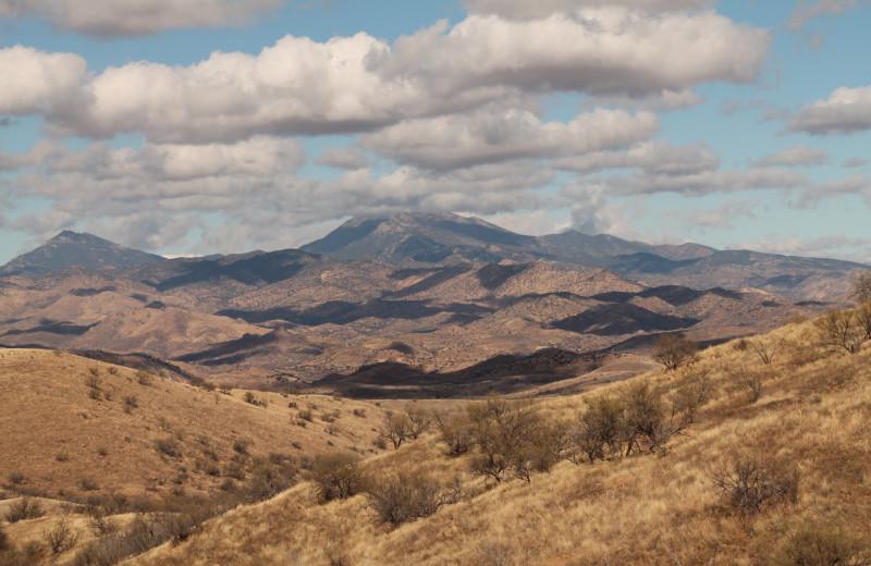 Scenic view at Circle Z Ranch.