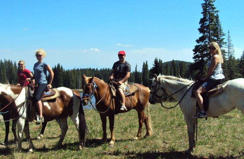 Horseback riding at Hotchkiss Inn.