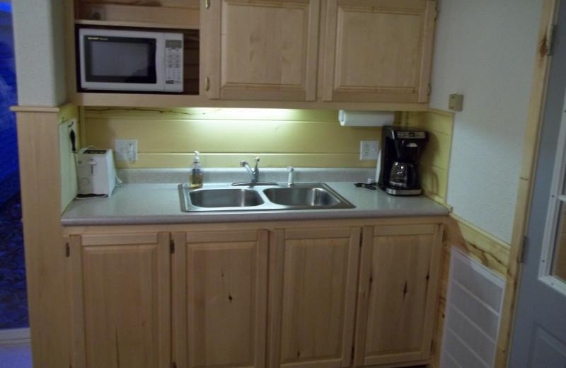 Cabin kitchen at Wilderness Resort.