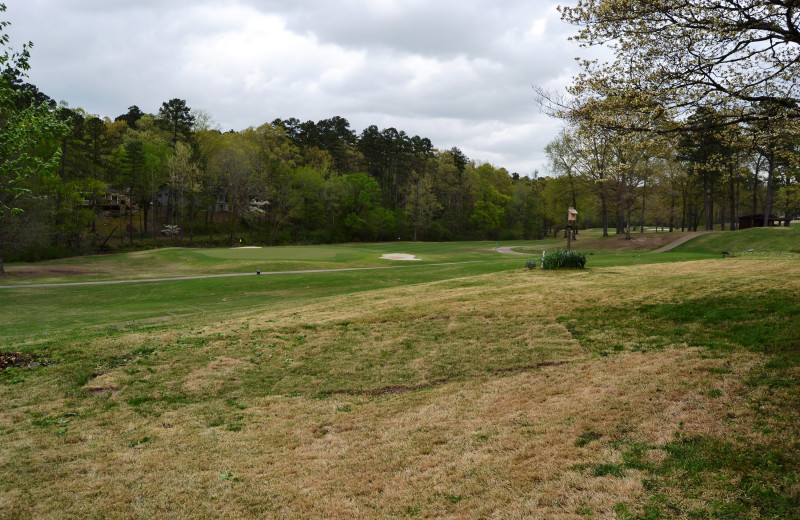 Golf at Hot Springs Village Rentals.