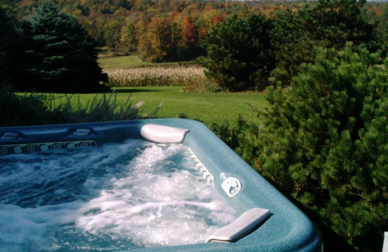 Jacuzzi at TimberMist Bed & Breakfast.