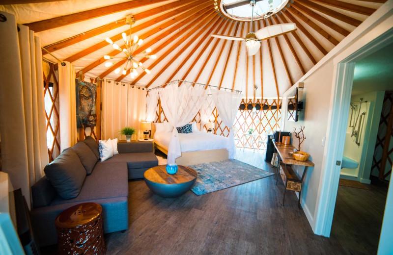 Yurt interior at Escalante Yurts.
