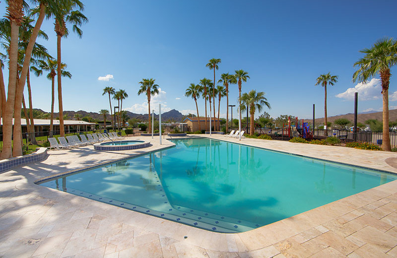 Outdoor pool at Havasu Springs Resort.