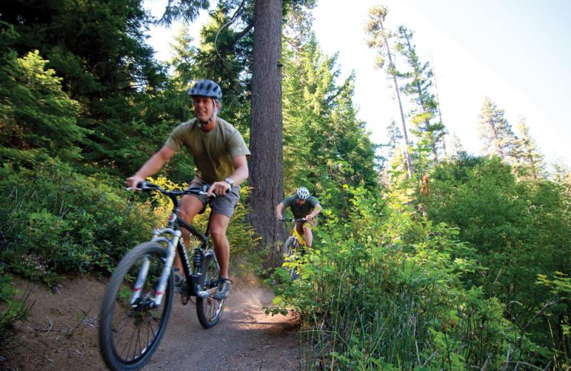Biking at Shamrock Bay Resort.