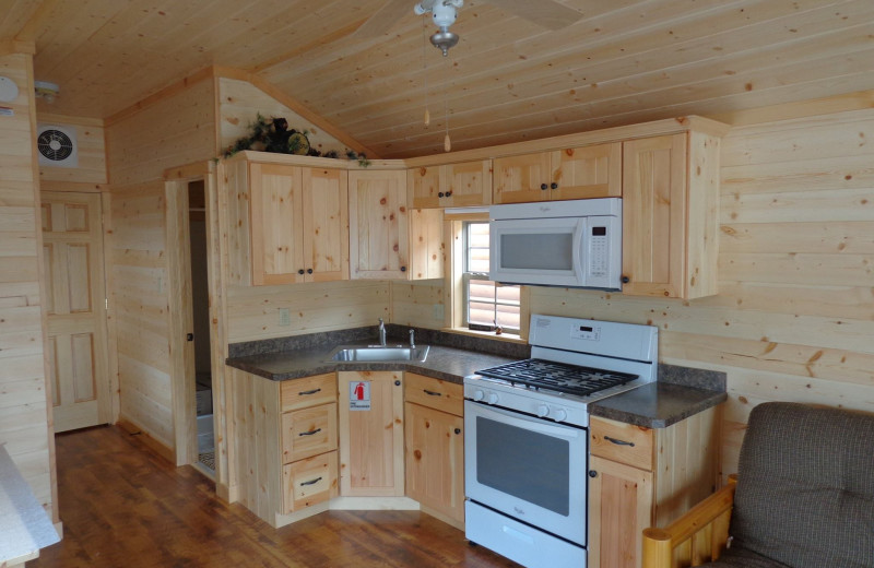 Cabin kitchen at Yogi Bear's Jellystone Park Gardiner.