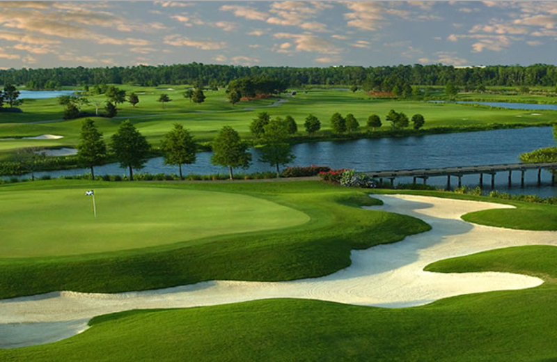 Golf in Orlando during your stay!