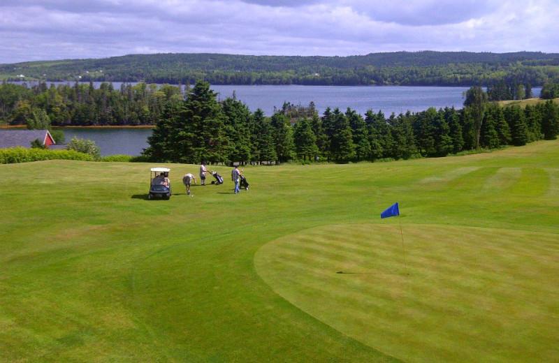 Golf course at Osprey Shores Golf Resort.