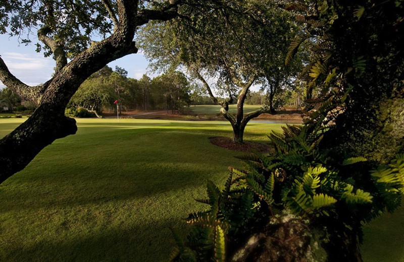 Golf course at Beau Rivage Golf & Resort.