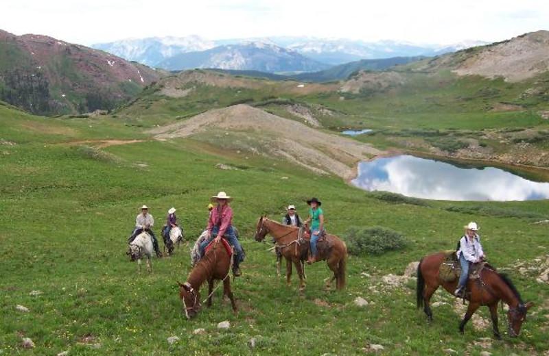 Horseback riding near The Nordic Inn.