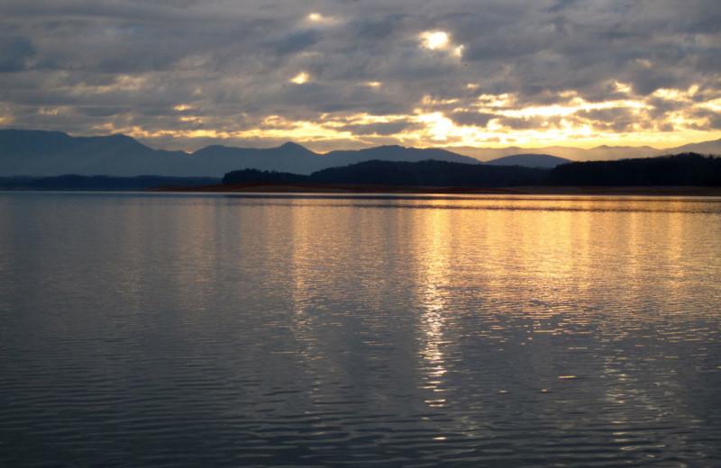 Douglas Lake near Cobbly Nob Rentals.