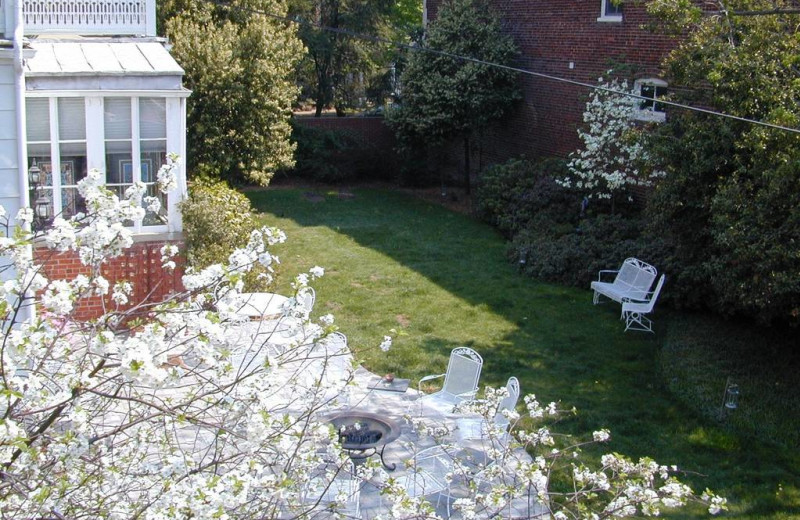 Garden at Grace Manor Inn.