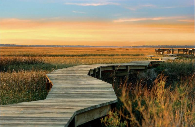 Boardwalk at Omni Amelia Island Plantation.