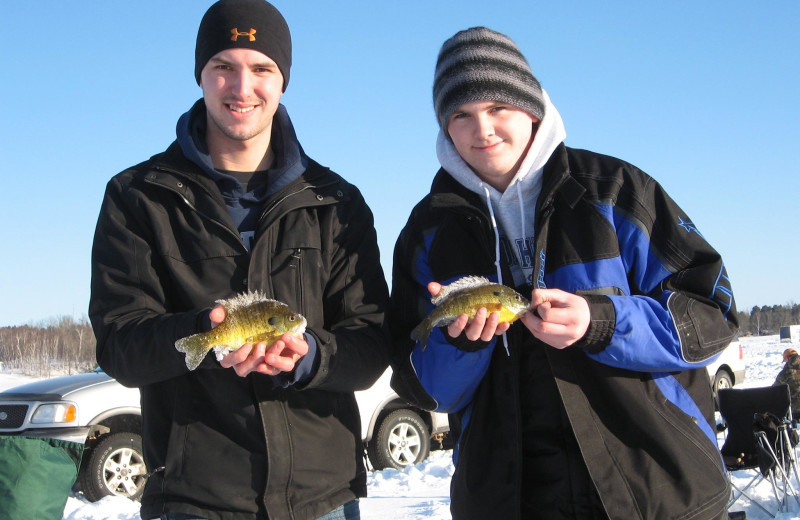 Ice fishing for BIG bluegills!