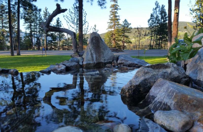 Pond at Powers Creek Retreat.