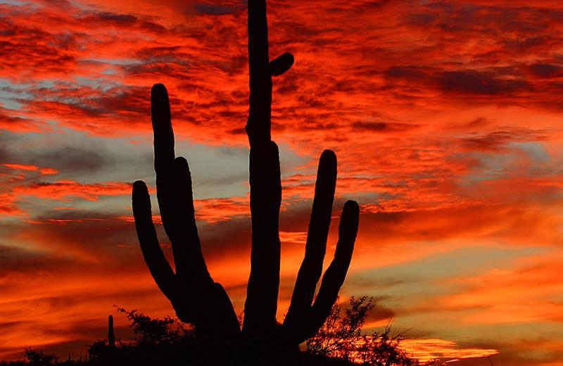 Sunset at The Lodge at Ventana Canyon.