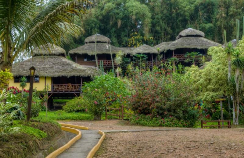 Exterior view of Arashá.