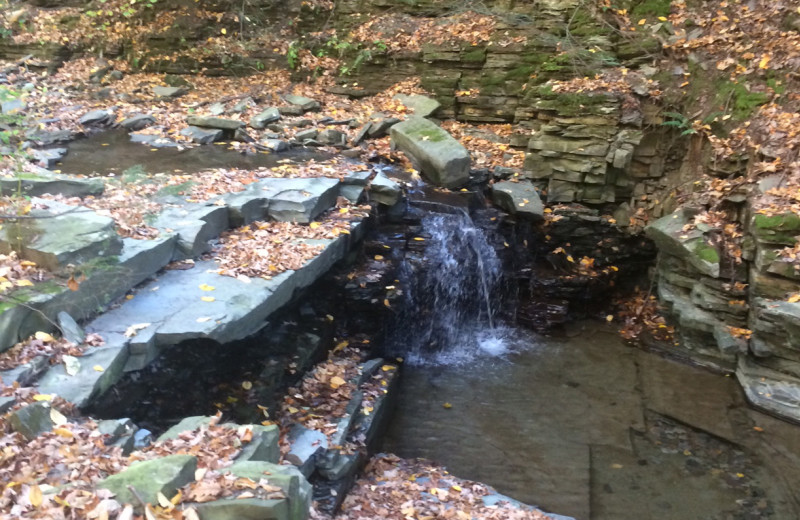 Creek at Clifftop On Seneca.