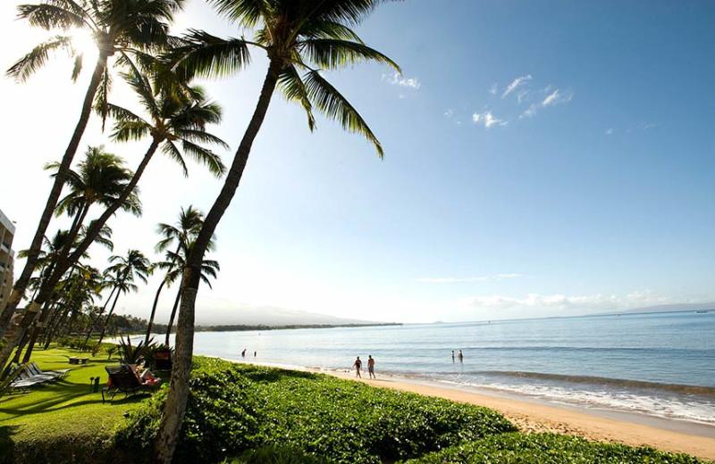 The beach at Sugar Beach Resort.