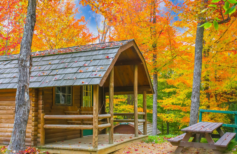 Fall cabin at Old Forge Camping Resort.