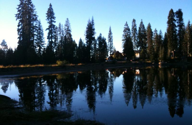 Scenic beauty at Montecito Sequoia Lodge.