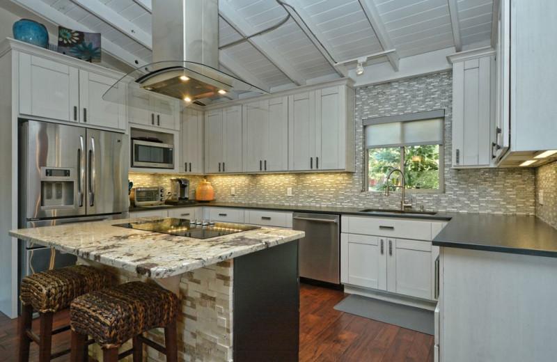Rental kitchen at Villa Manana.