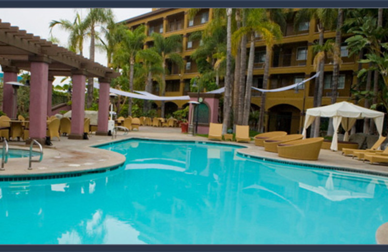 Outdoor pool at Hotel Menage.