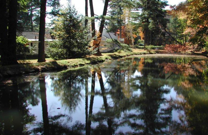 Pond at Pondside Country Motel