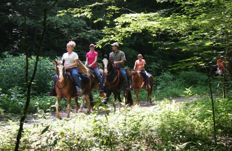 Horseback riding at Sunset Farm Cabins.