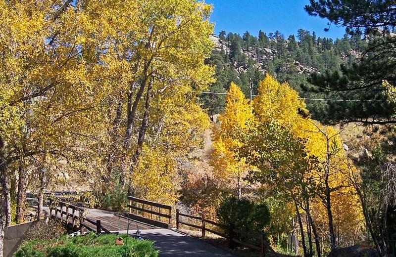 Fall colors at 4 Seasons Inn.