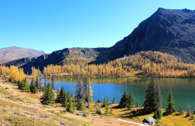 Scenic view at Cathedral Lakes Lodge.