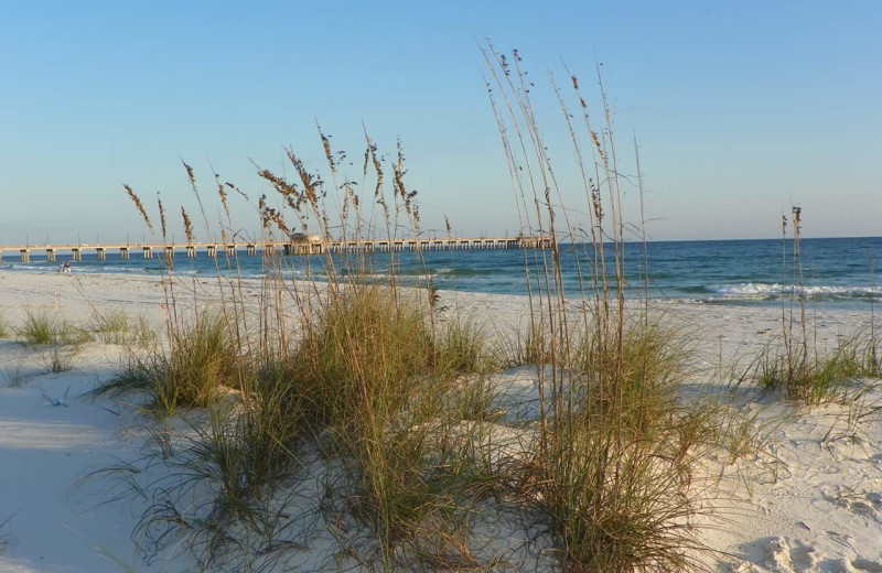 Beach at Alabama Coastal Properties.