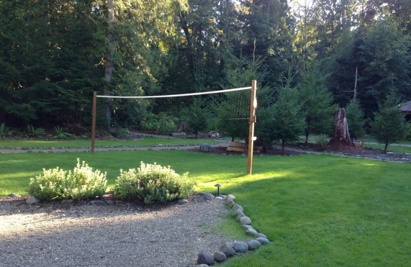 Volleyball court at Hood Canal Cottages.