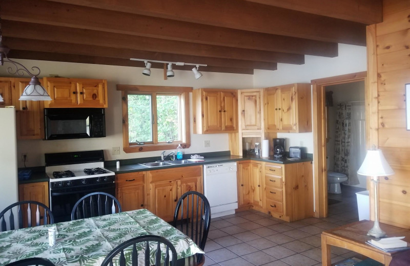 Cabin kitchen at The Birches Resort.