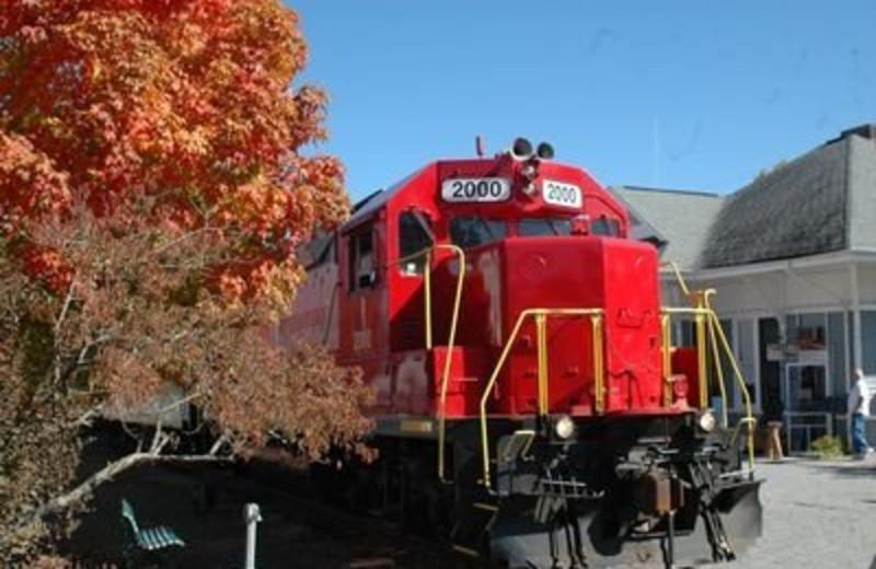 Train at JP Ridgeland Cabin Rentals