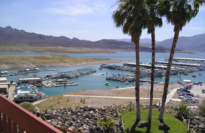 View of marina at Callville Bay.