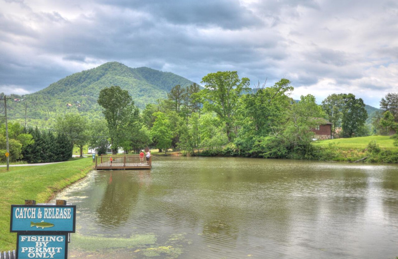 Fishing near Aunt Bug's Cabin Rentals, LLC.
