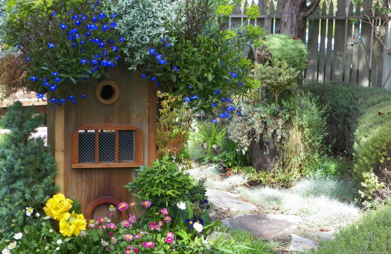 Bird House Garden at Cambria Pines Lodge.