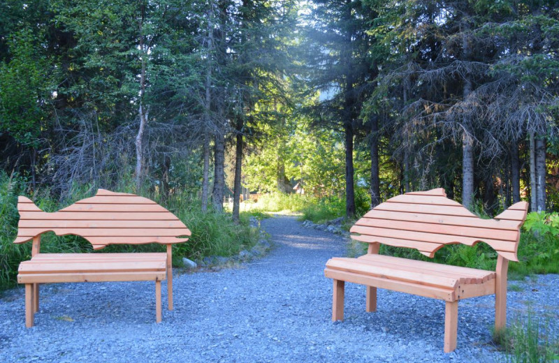 Fish benches at Summit Lake Lodge.