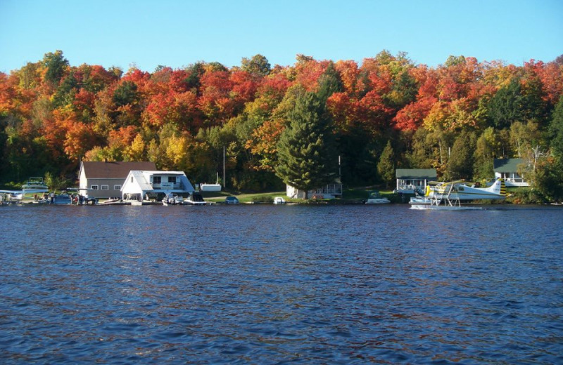 Lake view at Northern Lights Resort.