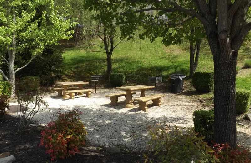 Picnic tables at Golfview Vacation Rentals.